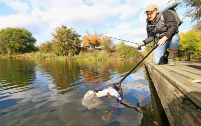 Anglers do their bit for the environment